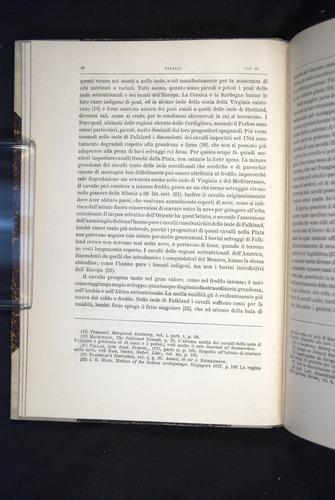 Image of Darwin-F920-1876-046