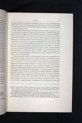 Image of Darwin-F920-1876-047