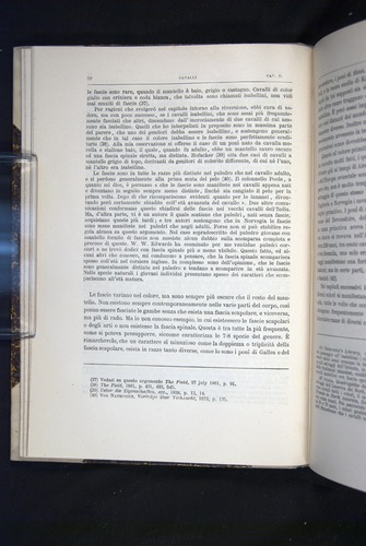 Image of Darwin-F920-1876-052