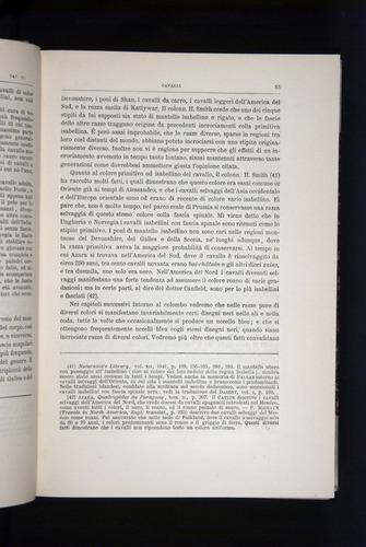 Image of Darwin-F920-1876-053