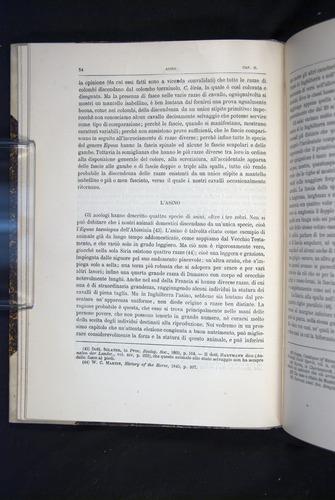 Image of Darwin-F920-1876-054