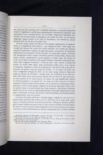 Image of Darwin-F920-1876-055