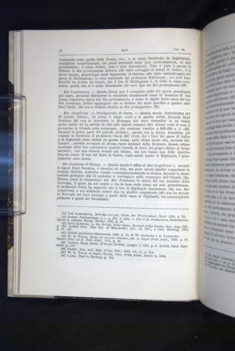 Image of Darwin-F920-1876-070