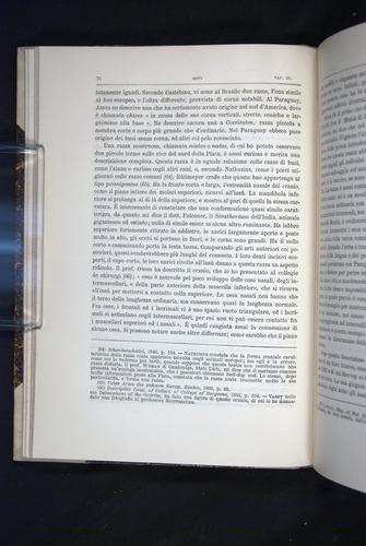 Image of Darwin-F920-1876-076