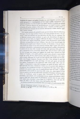 Image of Darwin-F920-1876-078