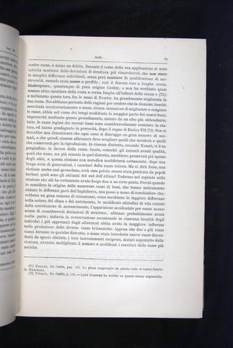 Image of Darwin-F920-1876-079