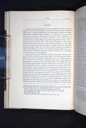 Image of Darwin-F920-1876-080