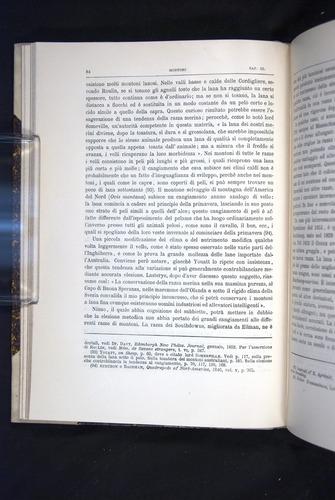 Image of Darwin-F920-1876-084