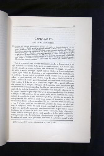 Image of Darwin-F920-1876-089