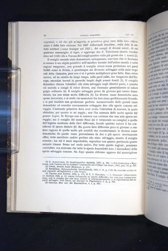 Image of Darwin-F920-1876-090