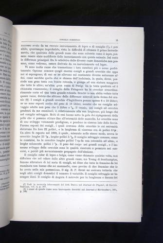 Image of Darwin-F920-1876-091