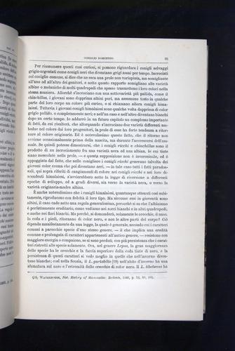Image of Darwin-F920-1876-095