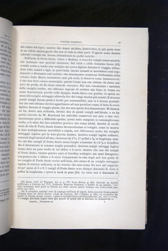 Image of Darwin-F920-1876-097