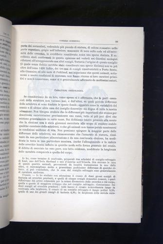 Image of Darwin-F920-1876-099