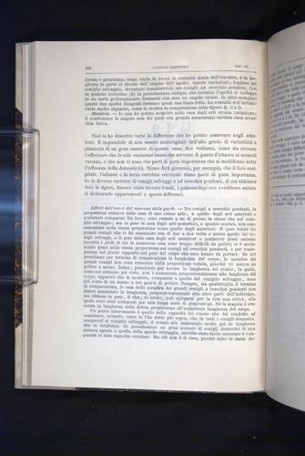 Image of Darwin-F920-1876-108