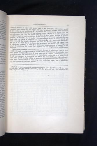 Image of Darwin-F920-1876-109