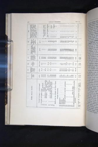 Image of Darwin-F920-1876-110