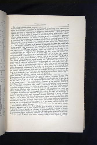 Image of Darwin-F920-1876-111