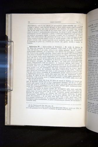 Image of Darwin-F920-1876-124