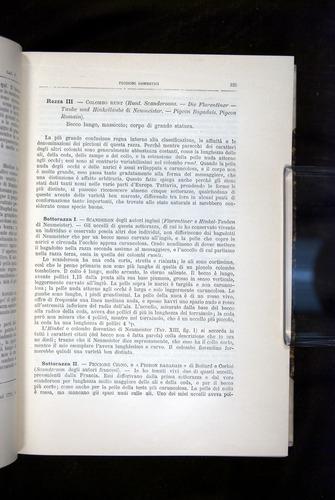 Image of Darwin-F920-1876-125