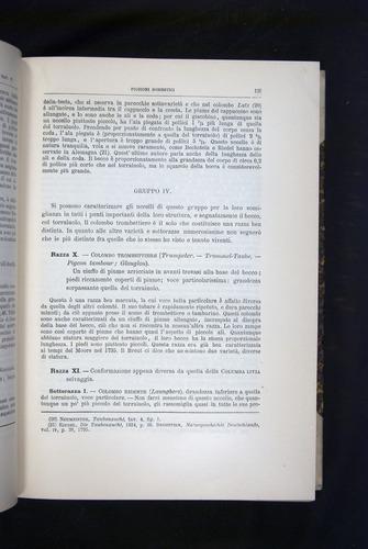 Image of Darwin-F920-1876-135
