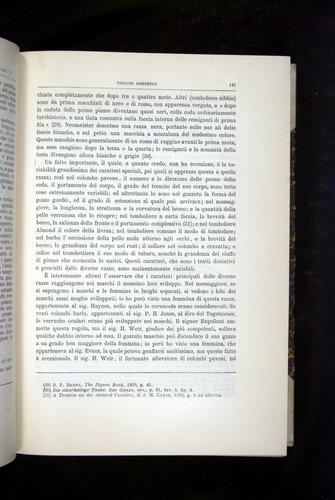 Image of Darwin-F920-1876-141