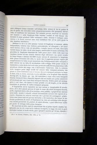 Image of Darwin-F920-1876-149