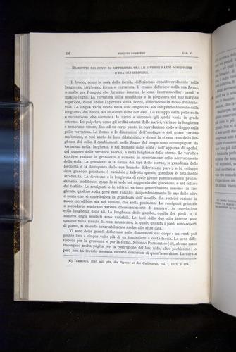 Image of Darwin-F920-1876-156