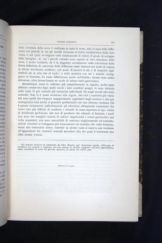 Image of Darwin-F920-1876-157