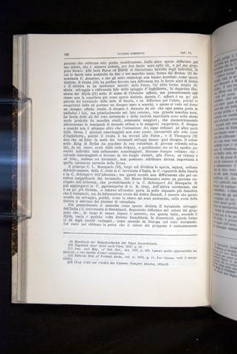 Image of Darwin-F920-1876-162