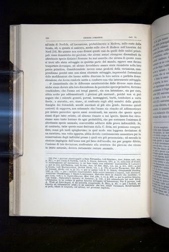 Image of Darwin-F920-1876-168
