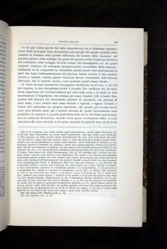 Image of Darwin-F920-1876-169