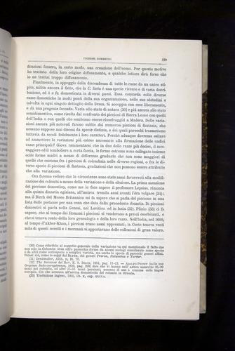 Image of Darwin-F920-1876-179
