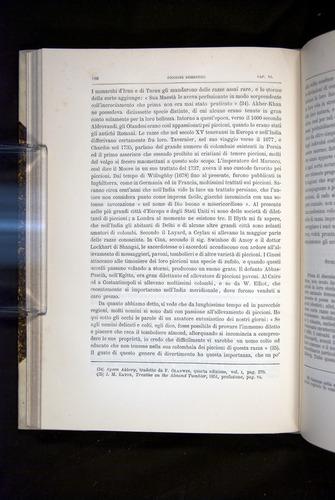 Image of Darwin-F920-1876-180