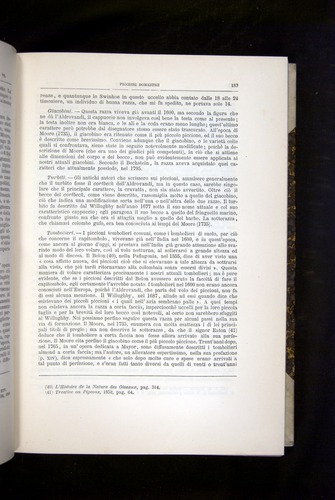 Image of Darwin-F920-1876-183