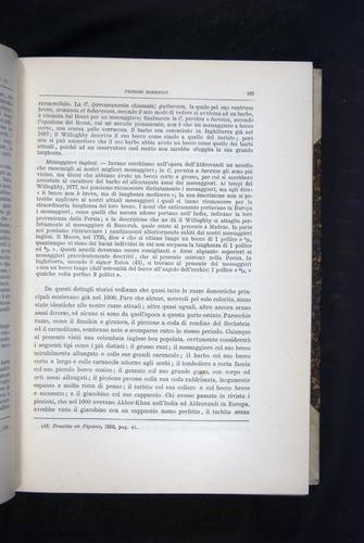 Image of Darwin-F920-1876-185