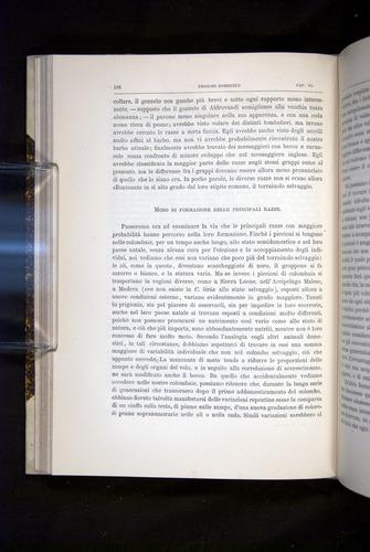Image of Darwin-F920-1876-186