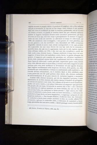 Image of Darwin-F920-1876-188