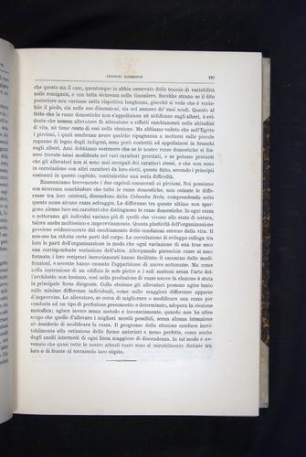Image of Darwin-F920-1876-195