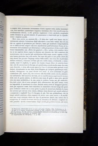 Image of Darwin-F920-1876-203