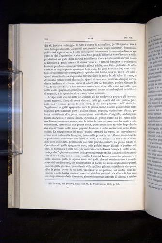 Image of Darwin-F920-1876-210
