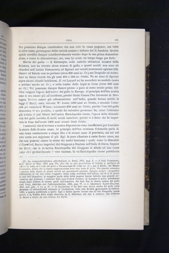 Image of Darwin-F920-1876-215