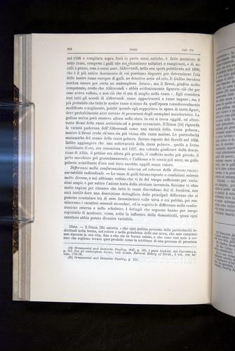 Image of Darwin-F920-1876-216