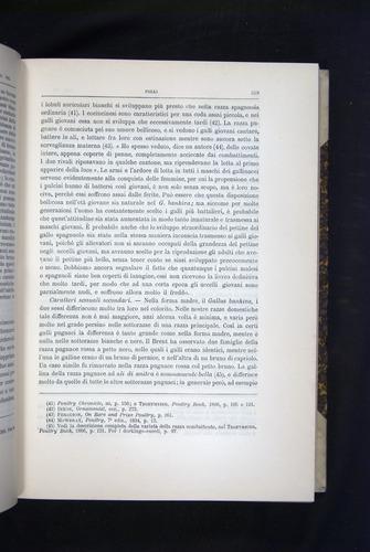 Image of Darwin-F920-1876-219