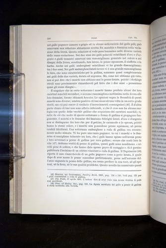 Image of Darwin-F920-1876-220