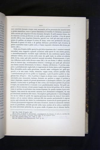Image of Darwin-F920-1876-221