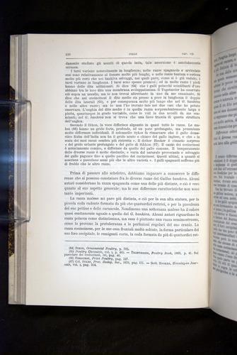 Image of Darwin-F920-1876-226