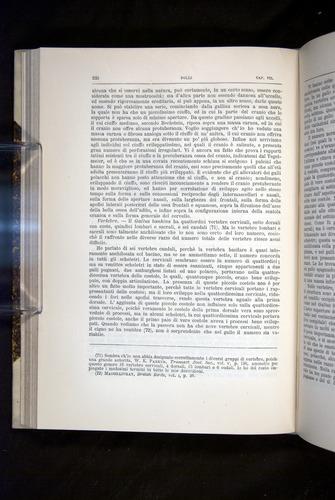 Image of Darwin-F920-1876-232