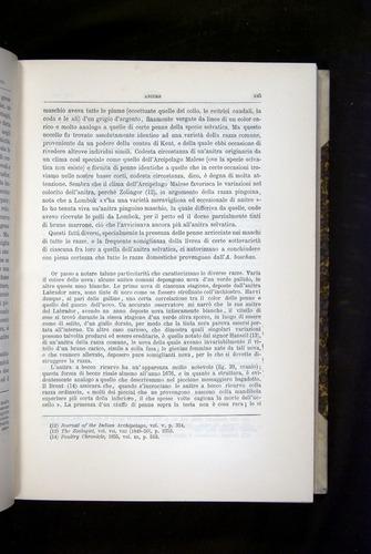 Image of Darwin-F920-1876-245