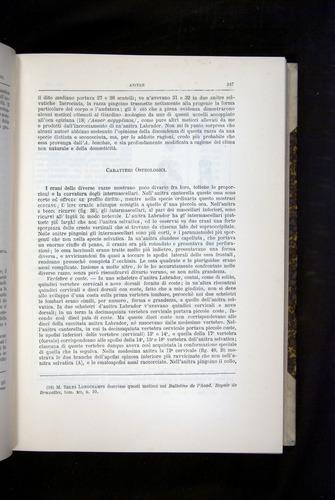Image of Darwin-F920-1876-247